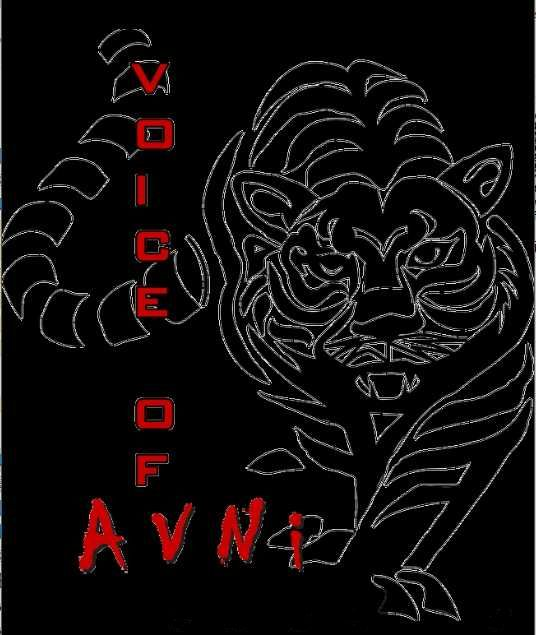 Voice of Avni